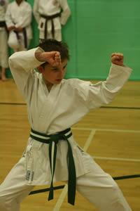 karate kata being displayed